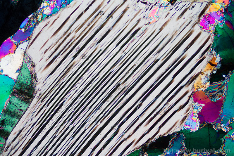 thin section of mica in polarising microscope