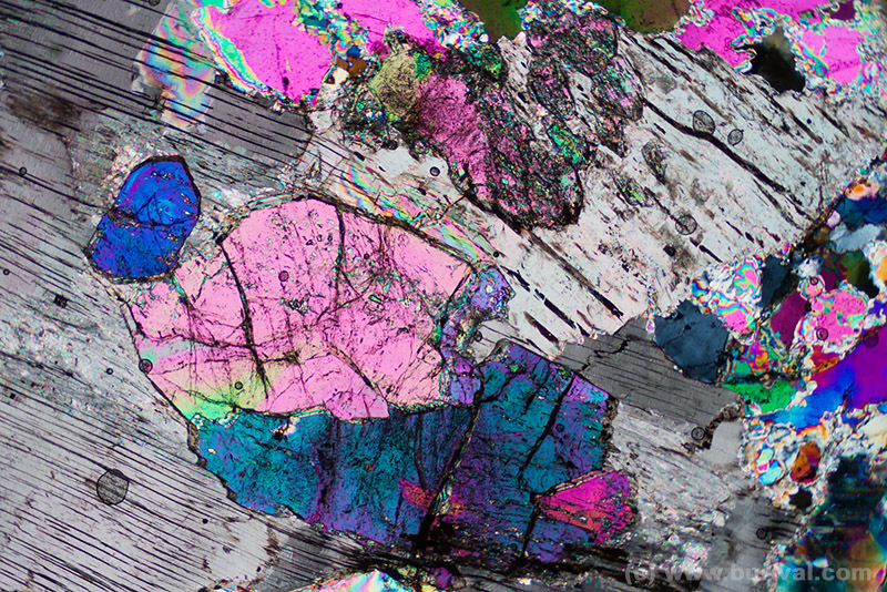 thin section of lepidolite mica and tourmalines