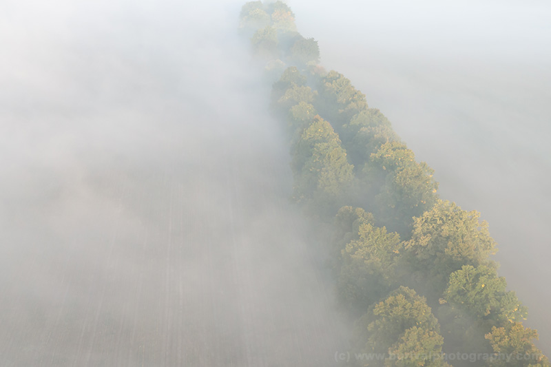 aerial-misty-road